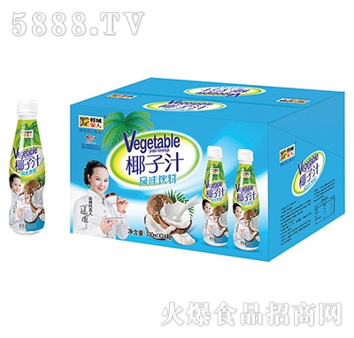 蓉城家人椰子汁风味饮料330mlx24瓶