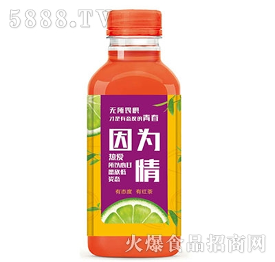 令德堂柠檬红茶瓶装产品图