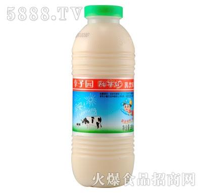 李子园甜牛奶280ml