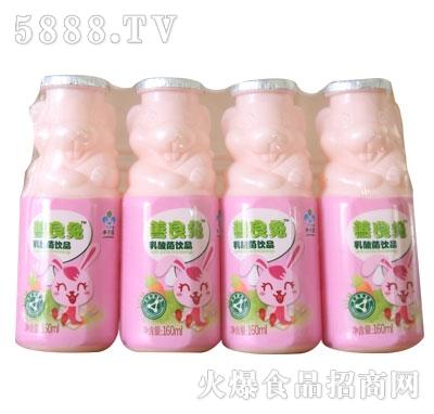 善良兔乳酸菌饮品
