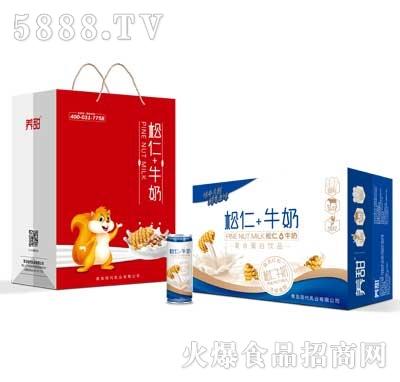 养甜松仁+牛奶复合蛋白饮品