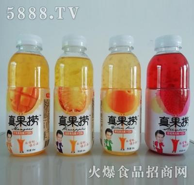 真果捞果肉果汁饮料500ml产品图