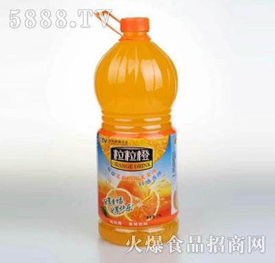 粒粒橙果味饮料瓶装产品图