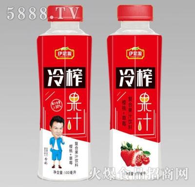 伊思源冷榨果汁复合果汁饮料500ml产品图