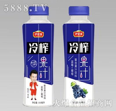 伊思源冷榨复合果汁饮料500ml产品图