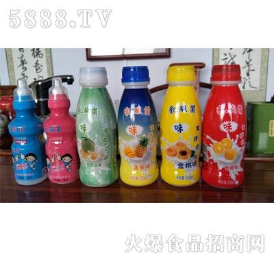 果味乳酸菌系列产品