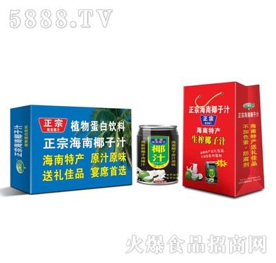 正宗海南椰汁系列产品