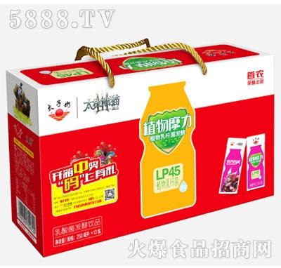 太子奶植物摩力乳酸菌发酵乳饮料250mlx12