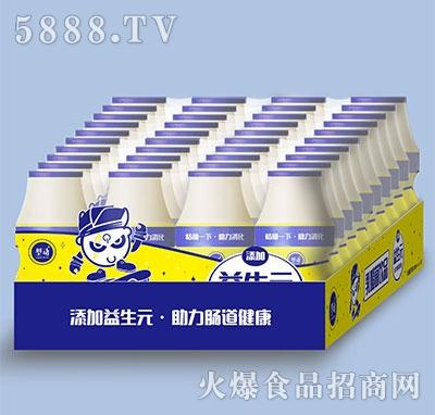 型动乳酸菌饮品100mlx4x10