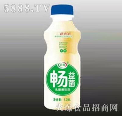 畅益菌乳酸菌饮品1.25L