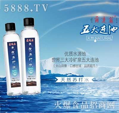 苏打尔天然苏打水(两瓶)