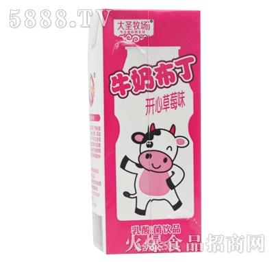 大圣牧场牛奶布丁乳酸菌饮品250ml1
