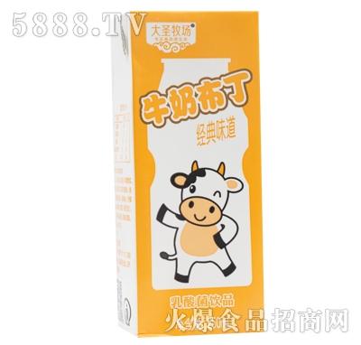 大圣牧场牛奶布丁乳酸菌饮品经典味道250ml