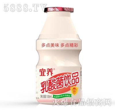 宜养乳酸菌饮品100ml