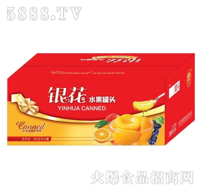 银花水果罐头248gX10