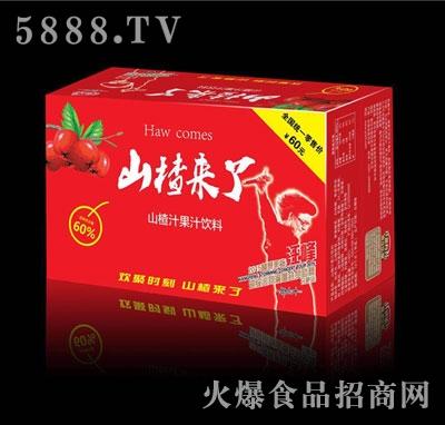 修花山楂果汁果肉饮料箱