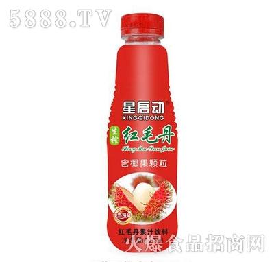 星启动红毛丹果汁饮料600ml产品图