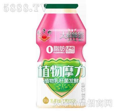 太子奶植物摩力乳酸菌发酵饮品原味