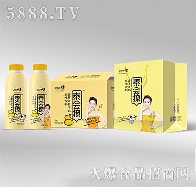 优洋泰会撩乳味芒果木瓜牛奶350mlx12瓶产品图