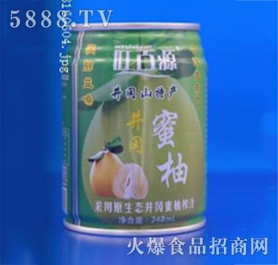 旺百源蜜柚果汁248ml