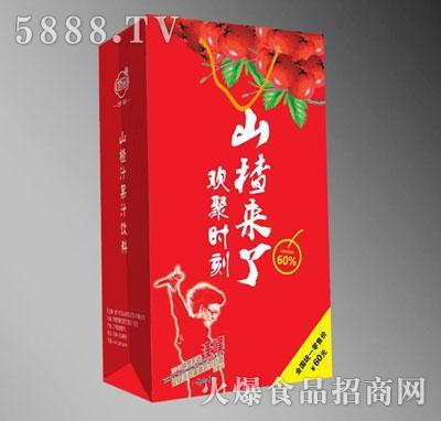 修花山楂来了汪峰山楂果汁饮料礼盒