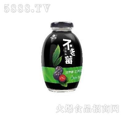 不老莓蓝莓汁