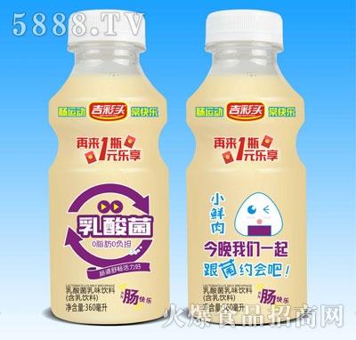 吉彩头小鲜肉乳酸菌乳味饮料360ml