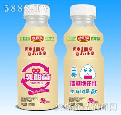 吉彩头土豪乳酸菌乳味饮料360ml