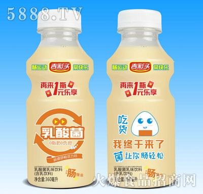 吉彩头乳酸菌乳味饮料360ml