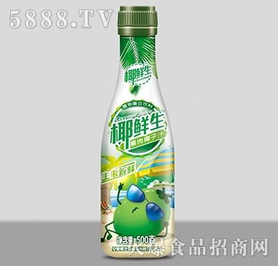 椰鲜生果肉椰子汁500g