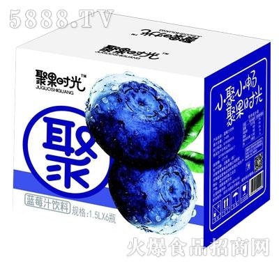 聚果时光蓝莓汁饮料1.5LX6