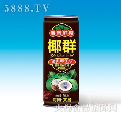 椰群果肉椰子汁245克