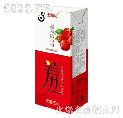 淼雨5道彩山楂果汁果肉饮料250ml