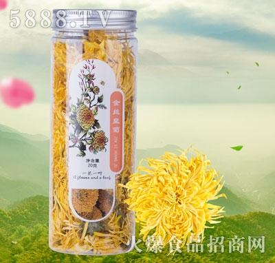 一花一叶金丝皇菊花茶产品图