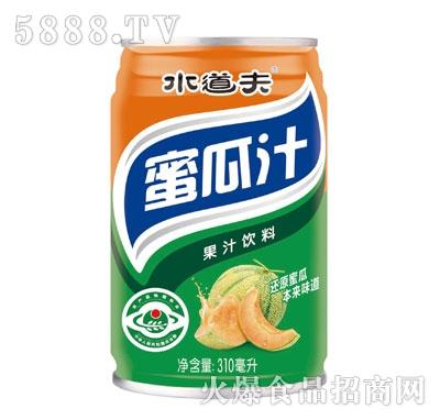 水道夫蜜瓜果汁饮料310ml