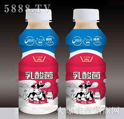 万圣元乳酸菌饮品340ml