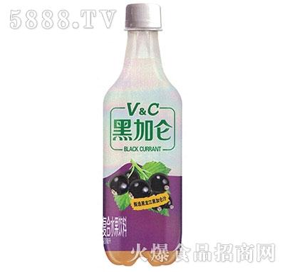 黑加仑含气水果饮料500ml产品图