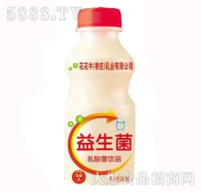 萌小豪花花牛益生菌乳酸菌饮品340ml草莓味