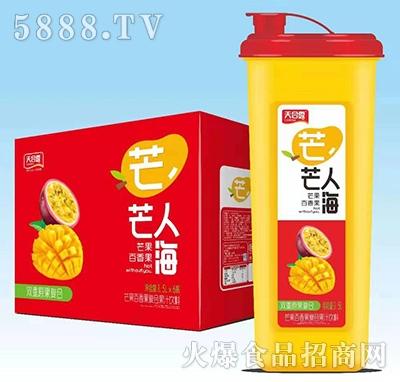 天合露莓你不可蓝莓树莓复合果汁1.5Lx6
