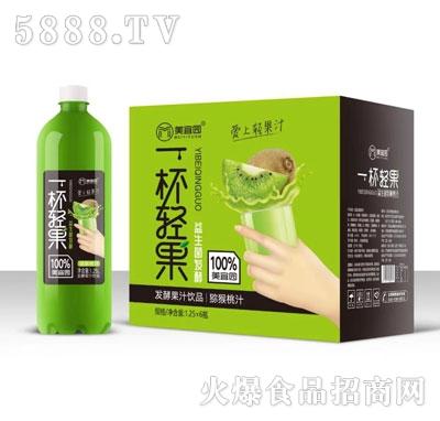 美宜园益生菌发酵猕猴桃汁1.25LX6