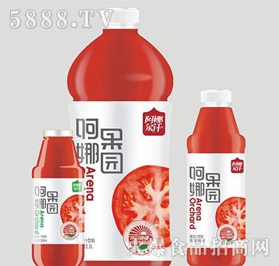 阿娜尔汗阿娜果园番茄汁产品图