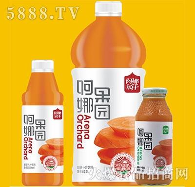阿娜尔汗阿娜果园胡萝卜汁产品图
