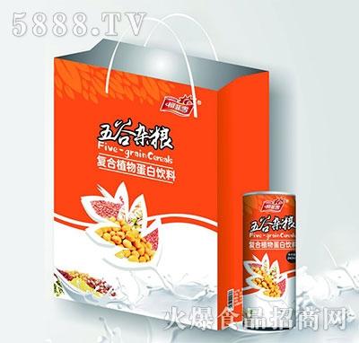 柯菲雪五谷杂粮蛋白饮料礼盒