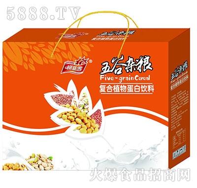 柯菲雪五谷杂粮蛋白饮料箱