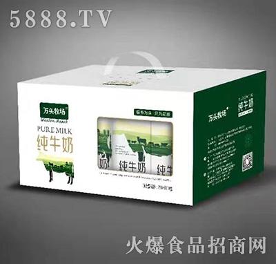 万头牧场纯牛奶饮品250mlx12盒手提装产品图