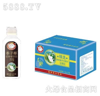 泰子椰生榨椰子汁450mlX15