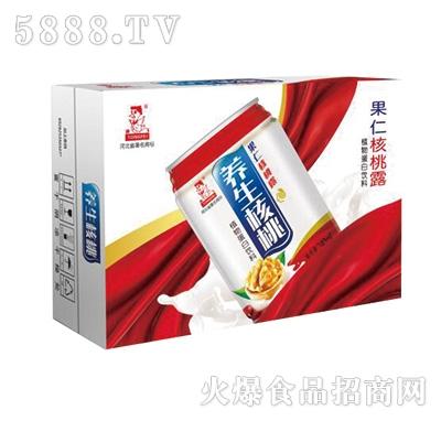 果仁养生核桃露植物蛋白饮料240mlx16罐产品图