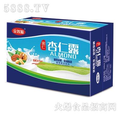 京智源果仁核桃露植物蛋白饮料240mlx20罐