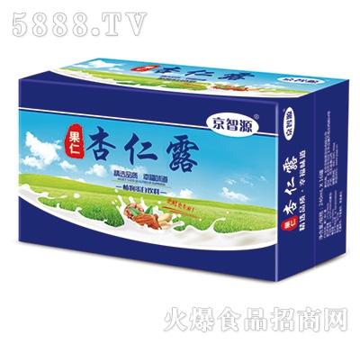 京智源果仁核桃露植物蛋白饮料240mlx16罐
