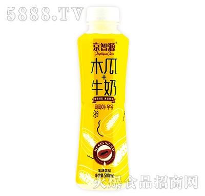京智源木瓜牛奶乳味饮品500ml产品图